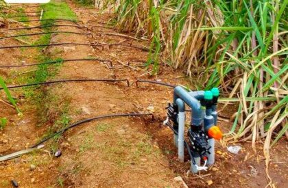 Drip-Irrigation-3-500x500